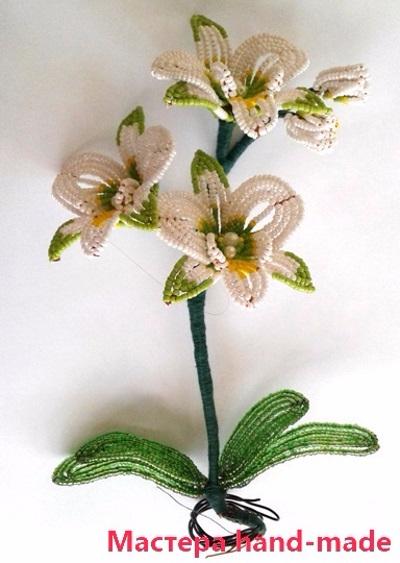 orhideja-iz-bisera25 (400x563, 197Kb)