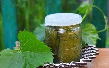 vinogradnye-listy-marinovannye (450x282, 79Kb)