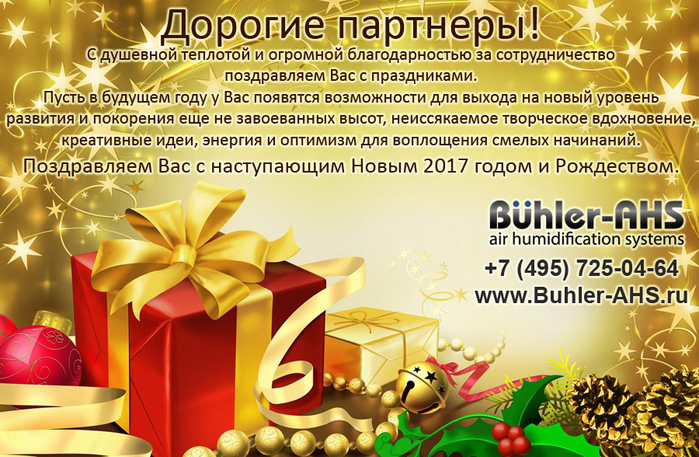 5724014_newyear_2017_BuhlerAHS (700x457, 405Kb)