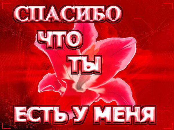 5719627___65533 (600x450, 73Kb)