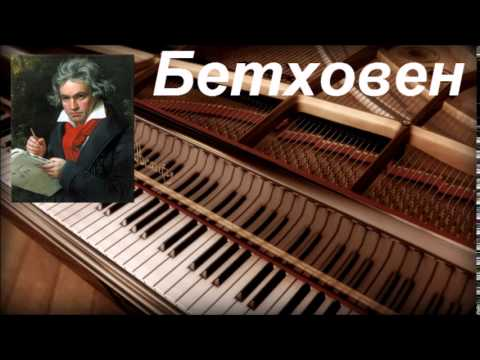 1760723_v-poiskah-bethovena (480x360, 21Kb)