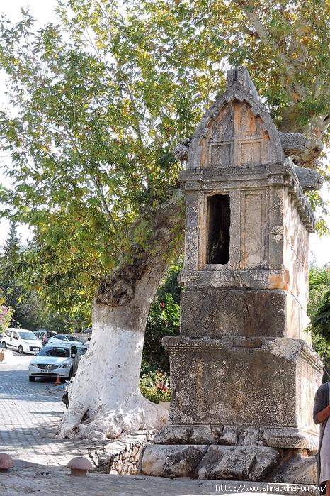 Shraddha_trаvel Турция 2016 (800) (466x700, 449Kb)