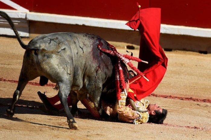 Бык на корриде убил матадора в прямом эфире (фото и видео)
