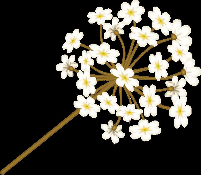 bsd_Floral Elegance_ Element (42) (700x610, 257Kb)
