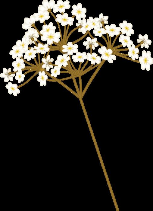 bsd_Floral Elegance_ Element (43) (508x700, 189Kb)