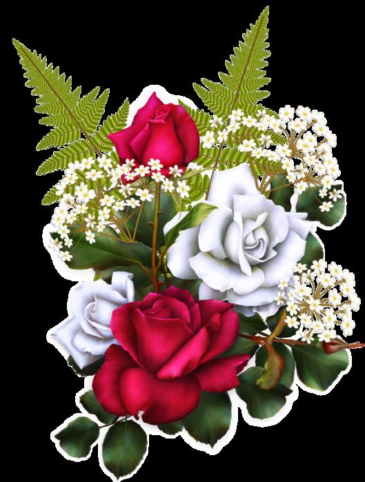 bsd_Floral Elegance_ Element (1x) (529x700, 480Kb)
