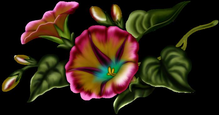 bsd_Floral Elegance_ Element (18) (700x369, 213Kb)