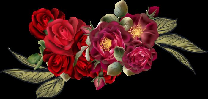 Beautiful Roses #4 (03) (700x335, 236Kb)