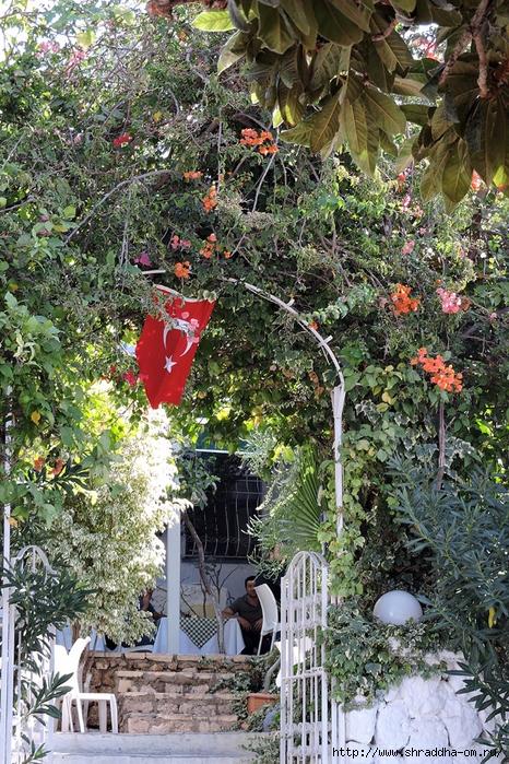 Shraddha_trаvel Турция 2016 (808) (466x700, 455Kb)