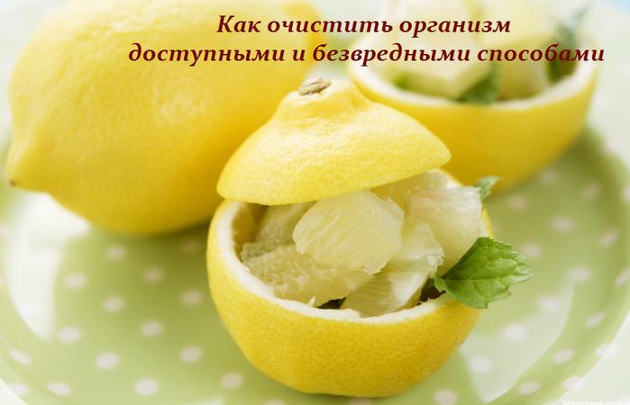 2749438_Kak_ochistit_organizm_dostypnimi_i_bezvrednimi_sposobami (700x450, 374Kb)
