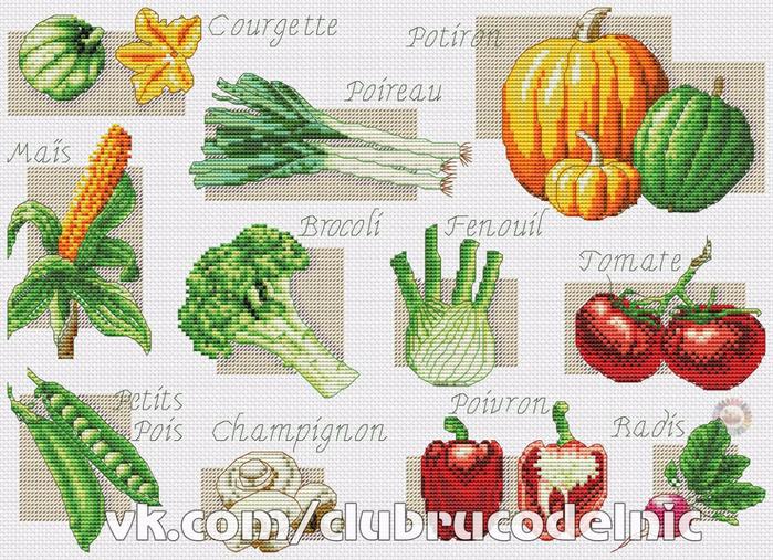 Вышивка.Овощи (700x507, 538Kb)