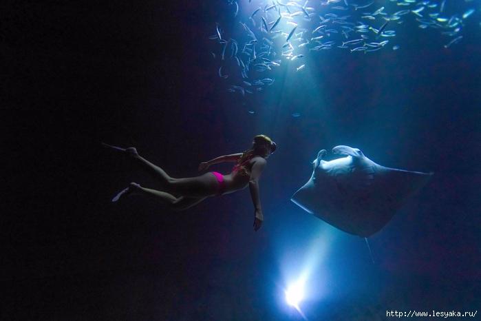 Морской дьявол: подводные фотографии из сердца океана!