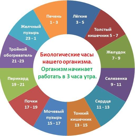 8twZAvb9tvo (512x516, 48Kb)