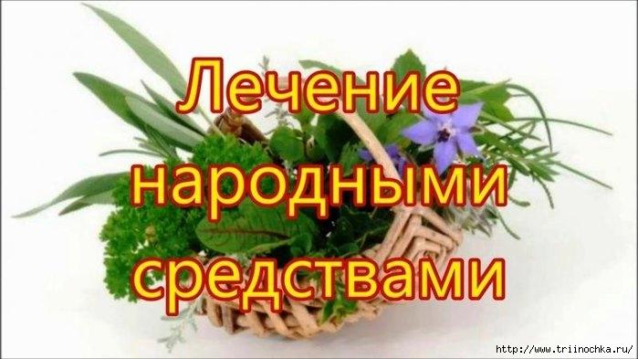 Несколько народных  средств при различных болезнях/4059776_Narodnie_sredstva (700x393, 137Kb)