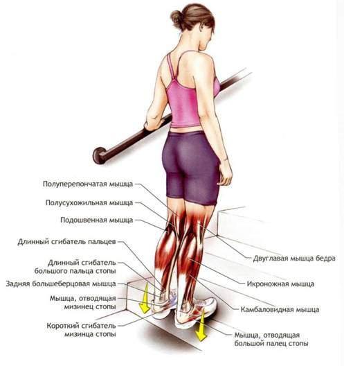 Как заставить похудеть икры ног