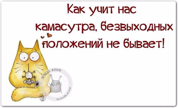 1424638821_frazki-17 (604x367, 134Kb)