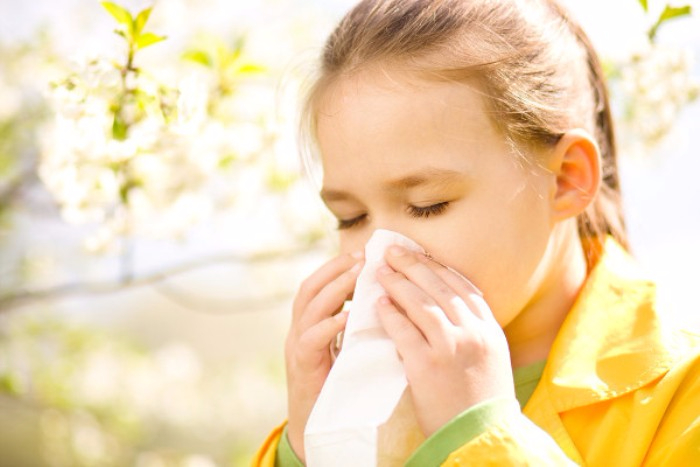 allergia-rinitus (700x467, 247Kb)
