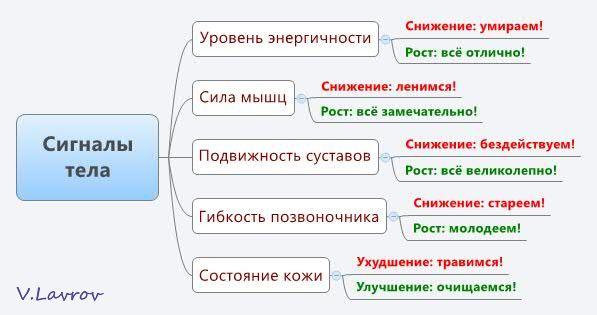 5954460_Signali_tela (597x315, 29Kb)