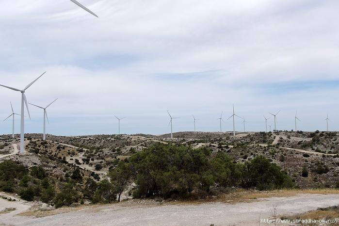 Кипр, май 2016 (341) (700x466, 239Kb)