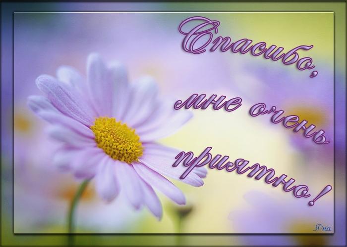 104731232_6Spasibo_mne_ochen_priyatno (700x500, 228Kb)