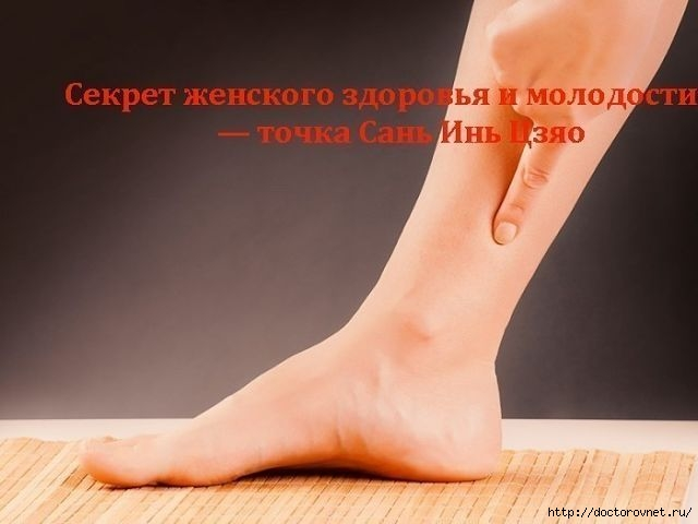 5239983_SEKRET_JENSKOGO_ZDOROVYa_I_MOLODOSTI (640x480, 101Kb)