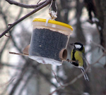 Превью Кормушки для птиц (700x630, 263Kb)