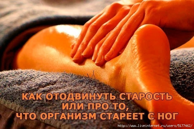 5177462_image (640x426, 199Kb)