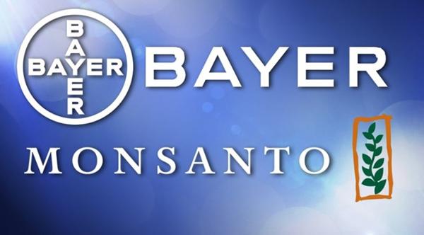 Кому в РОССИИ нужно ГМО. (600x332, 130Kb)
