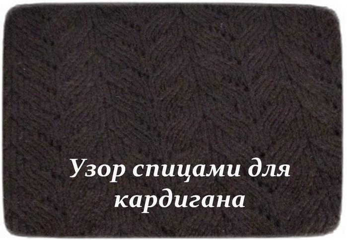 5985022_IMG_2292 (700x484, 76Kb)