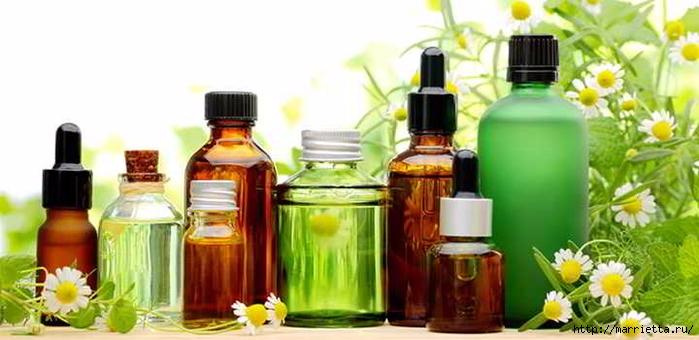 Исцеляющие ароматы (3) (700x340, 168Kb)