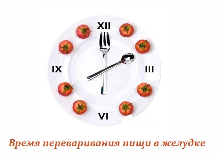 2749438_Vremya_perevarivaniya_pishi_v_jelydke (700x497, 163Kb)