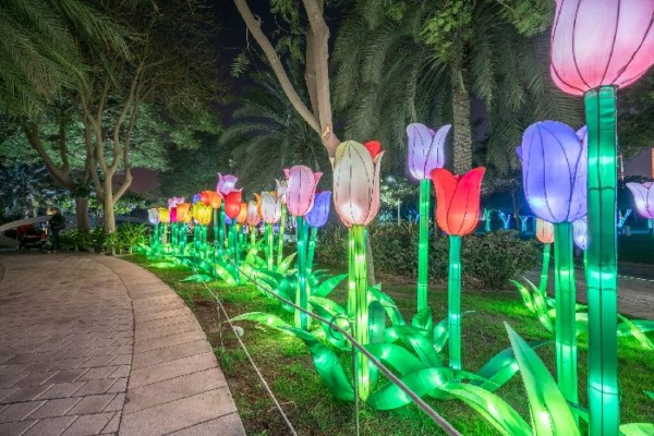 Светящийся-сад-в-Дубаи-Dubai-Garden-Glow-15 (600x400, 299Kb)