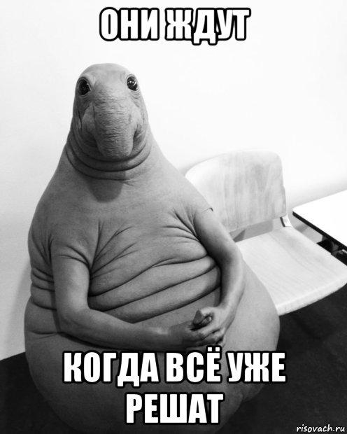 zhdun_136826716_orig_ (496x620, 43Kb)