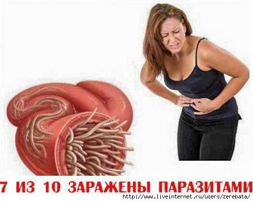 5732271__izbavitsya_ot_parazitov_kotorye_zhivut_prakticheski_v_kazhdom_cheloveke_sovety_ (500x400, 93Kb)