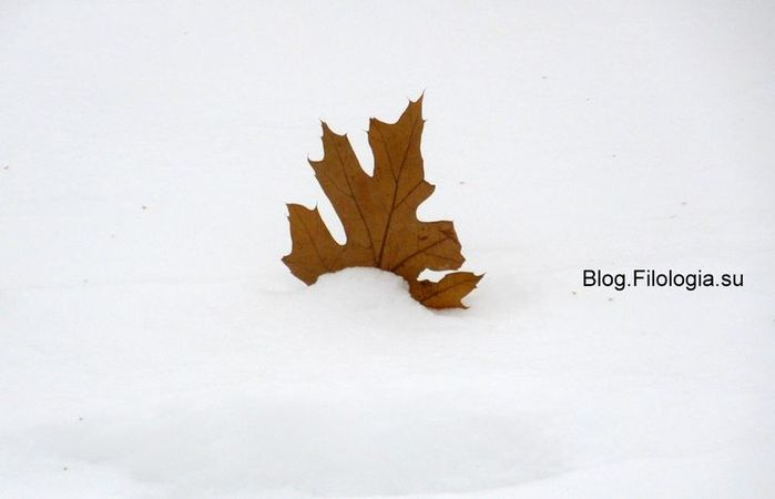 Одинокий кленовый лист на белом снегу/3241858_mart01 (700x450, 18Kb)