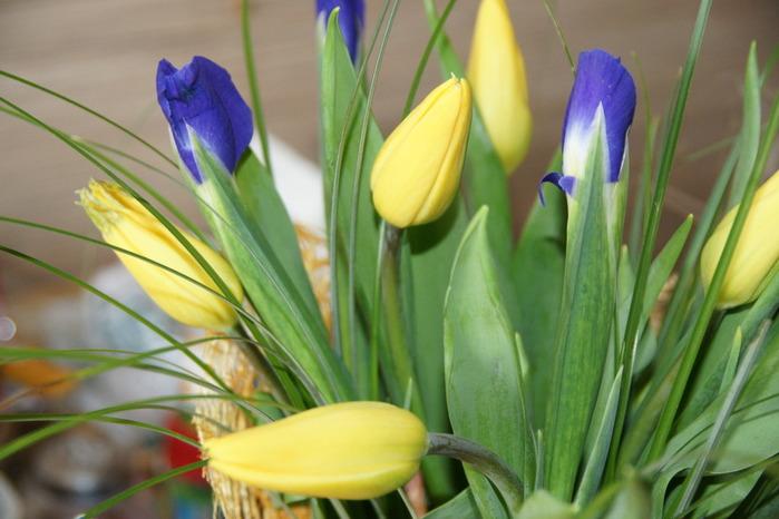 2011-03-04 23-41-10 (700x466, 89Kb)