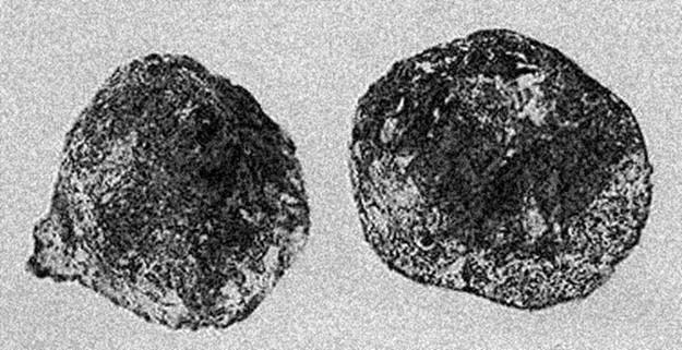Древний артефакт! Свеча зажигания возрастом 500 тысяч лет
