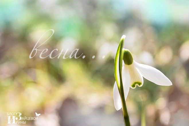 poesia_spring_07 (659x440, 118Kb)