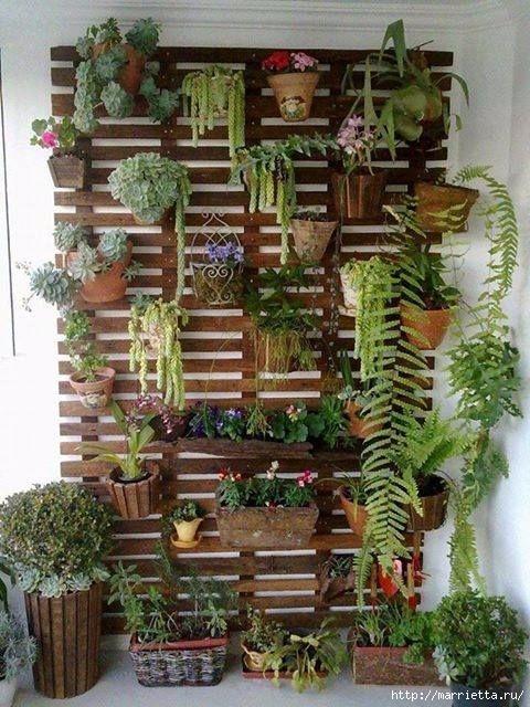 Вертикальные сады (16) (480x640, 232Kb)