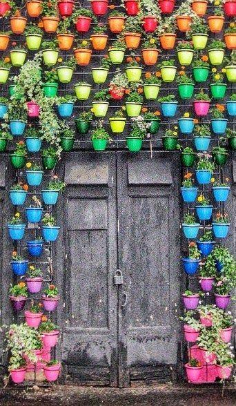 Вертикальные сады (18) (342x588, 340Kb)