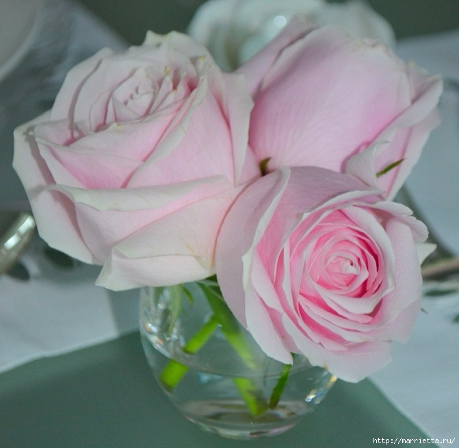 Цветы для вас (65) (671x655, 199Kb)