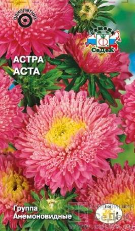 astra_asta (266x454, 193Kb)