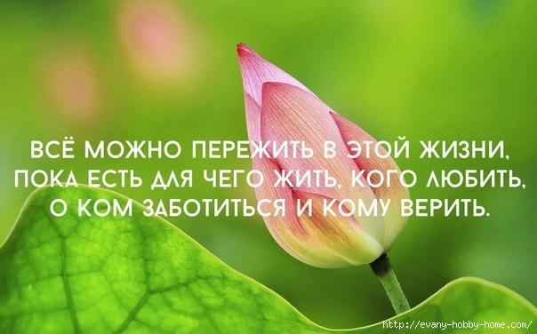 4428840_5 (604x376, 121Kb)