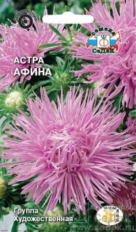 astra_afina (266x452, 185Kb)