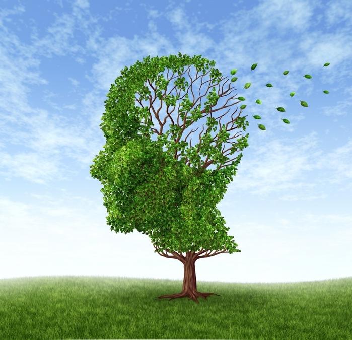 Эксперты сделали вывод, что длительный сон крайне негативно воздействует на интеллектуальные способности человека и повышает риск развития слабоумия