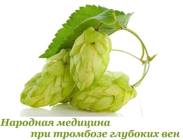 2749438_narodnaya_medicina_pri_tromboze_glybokih_ven (627x480, 54Kb)