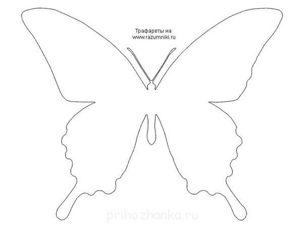 Как сделать бабочки из бумаги на стену трафареты