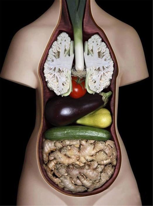 10 опровергнутых законов вегетарианства