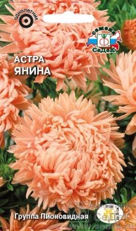 astra_yanina (266x451, 185Kb)