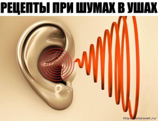 5239983_shym_v_yshah (624x480, 137Kb)